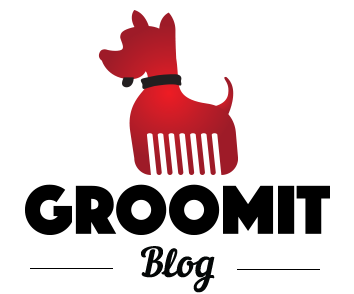 Winter Grooming: Keep Your Dog Healthy & Safe   Groomit Blog